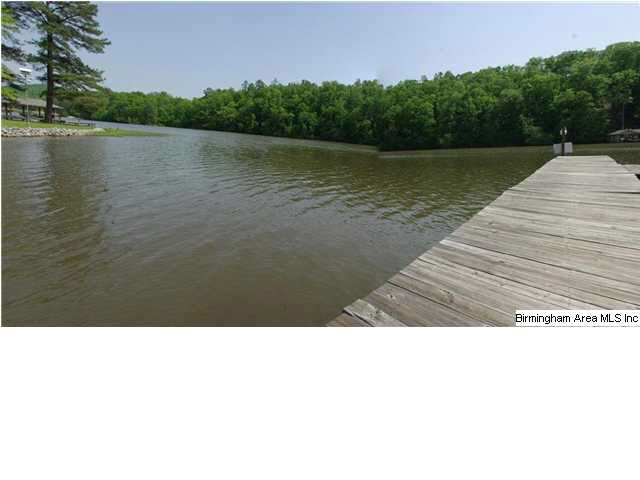 55 Palmetto CRK, Ashville, Alabama 35953