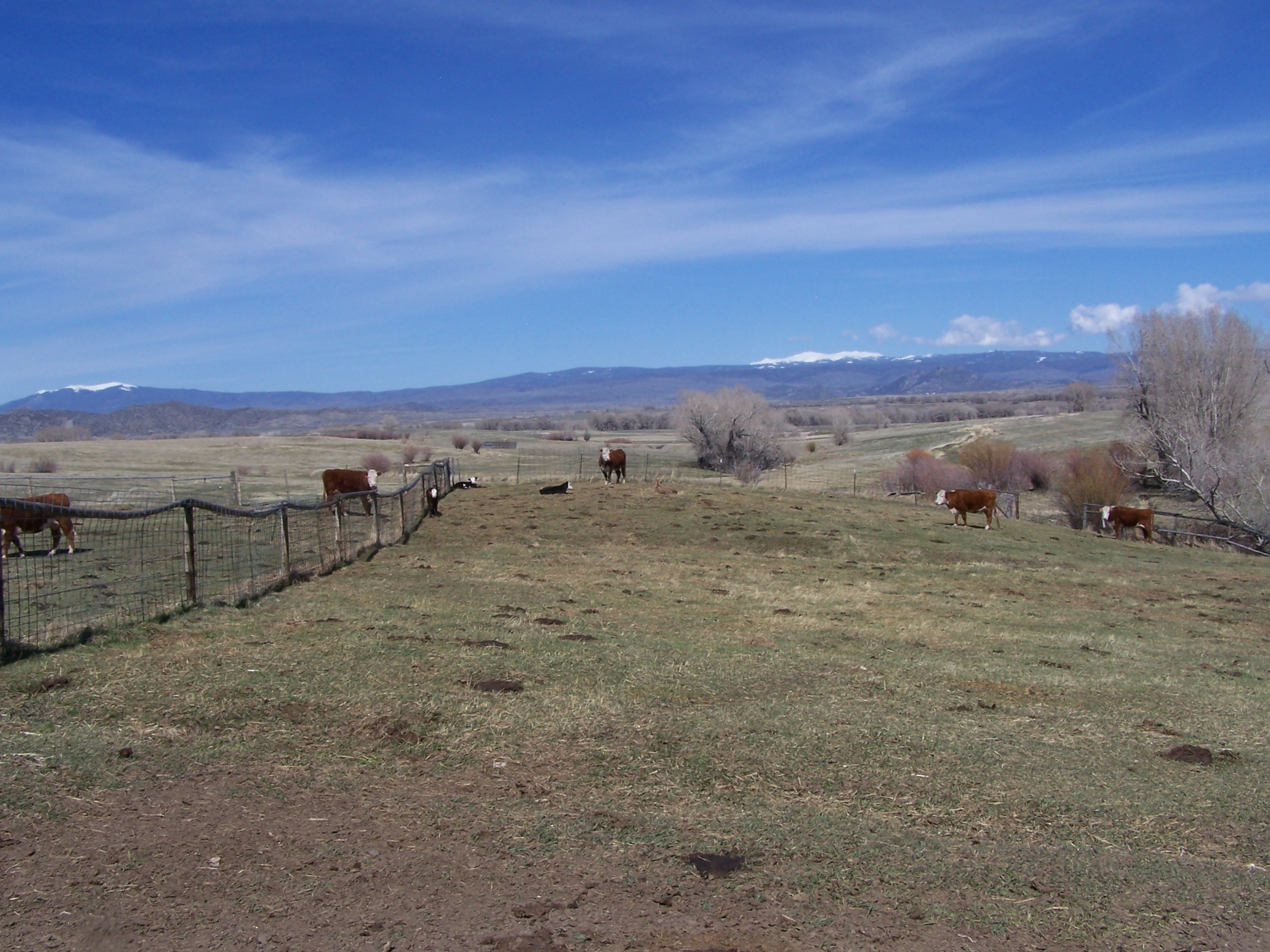 HDH, LLC County Road 303, Encampment, Wyoming 82325