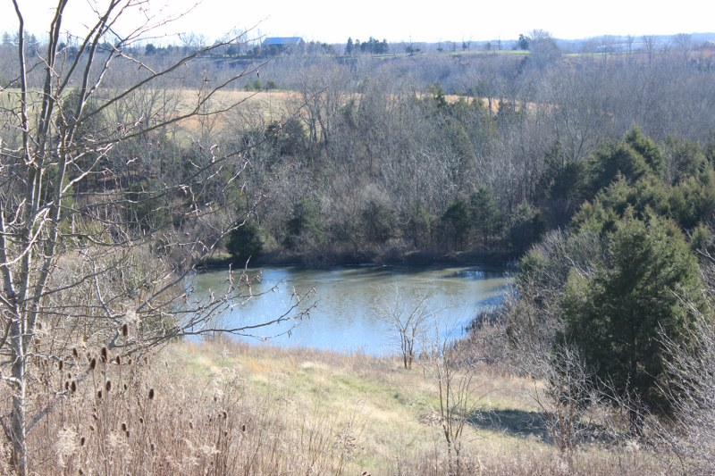 Tract # 1 Tatum Ridge Rd., Willisburg, Kentucky 40078