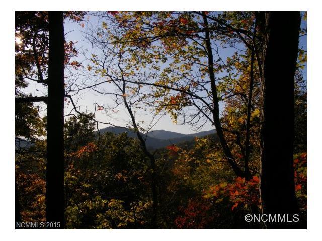 91  Little Rainbow Mountain Road, Black Mountain, NC 28711