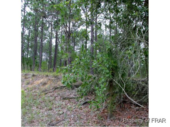 South River Rd. Rd, Autryville, NC 28318