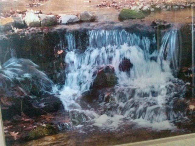 10650  Wolf Creek, Centerville, TN 37033